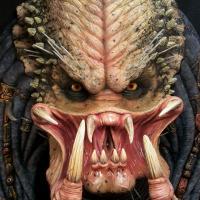 Elder head 2