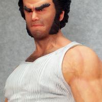 Narin Wolverine