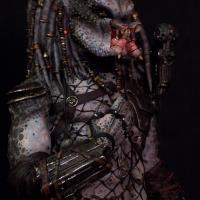 Predator 2 Elder