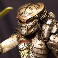 Warrior Predator Custom